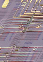 Researchers have used germanium wires to create a 'nanochip'. (Lieber Group/Harvard Univ)