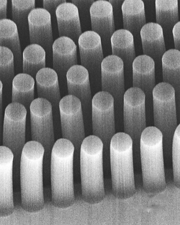 MIT uses forests of carbon nanotubes with antibodies to capture hard-to-detect molecules