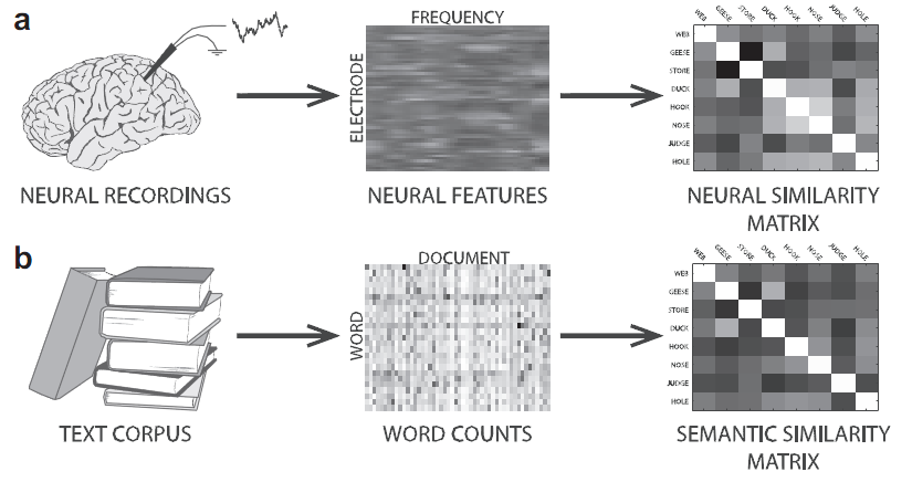 neural_vs_semantic_matrix