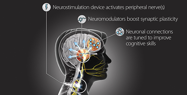 DARPA's 'Targeted Neuroplasticity Training' program aims to accelerate learning 'beyond normal levels'