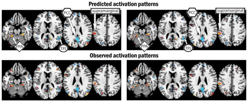 'Mind reading' technology identifies complex thoughts, using machine learning and fMRI