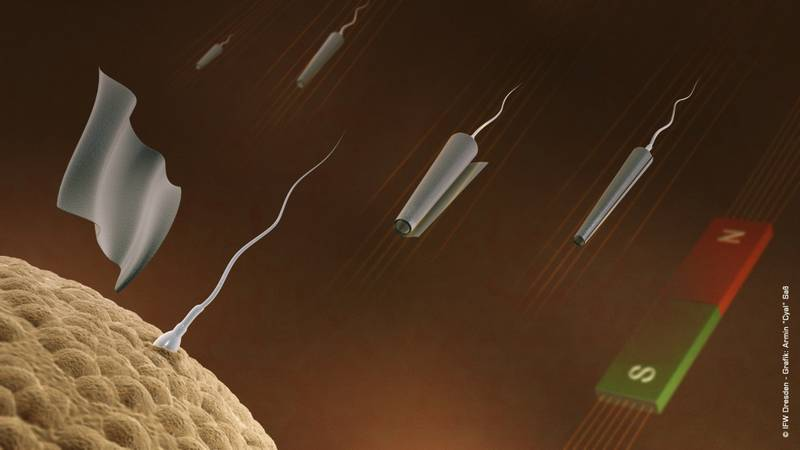 sperm_magnetic_control_1