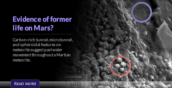 Evidence of former life on Mars?