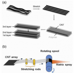 (a) Schematic illustration of the concept of straightening