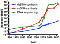 Efficiency trends in DNA sequencing (green) and synthesis of double-stranded DNA (dsDNA, blue) and single-stranded DNA (ssDNA, red) over the past ~35 years. Double-stranded DNA, or<br /> gene synthesis, has improved noticeably over the past ~10 years, but still lags behind<br /> sequencing and ssDNA synthesis. The disruptive improvement in sequencing and ssDNA (oligonucleotides) synthesis technologies has improved from multiplex and miniaturization technologies in high-throughput DNA sequencing and oligo microarray technologies, respectively. Commercial gene synthesis technologies relies on both oligo synthesis (building blocks) and sequencing (validation of synthesis) technologies. (credit: Jef D. Boeke/Science)