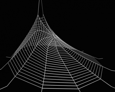 Unraveling the mysteries of spider-web strength and damage ...
