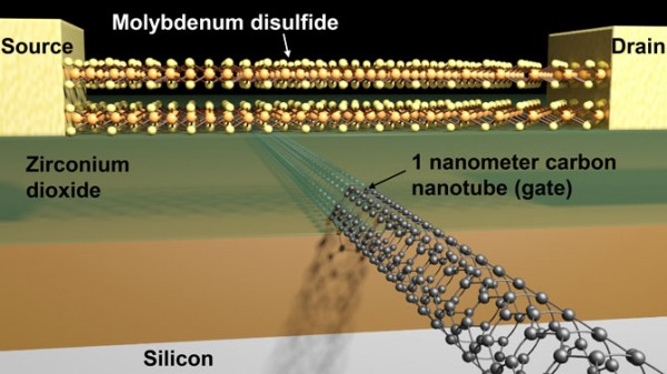 Schematic of a transistor with a molybdenum disulfide channel and 1 nanometer carbon nanotube gate. (credit: Sujay Desai/Berkeley Lab)