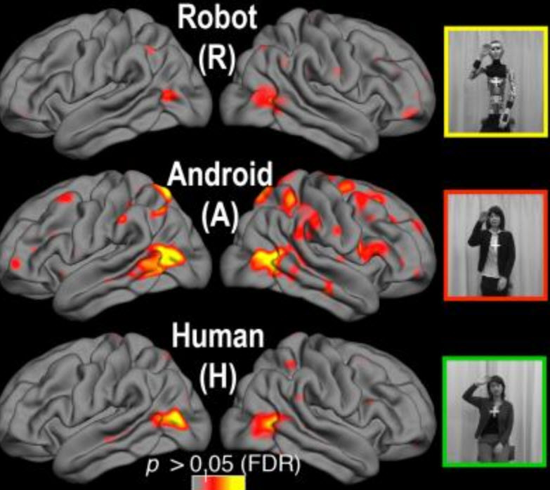 Brain responses to androids in the 'uncanny valley' | Kurzweil