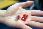 "An ""origami robot"" unfolds itself from an ingestible capsule, and can be used to perform operations in the body (credit: Melanie Gonick/MIT)"
