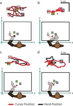 Aided by a robotic exoskeleton, a monkey can hit the target faster and more directly (Hatsopoulos, et al. The Journal of Neuroscience)